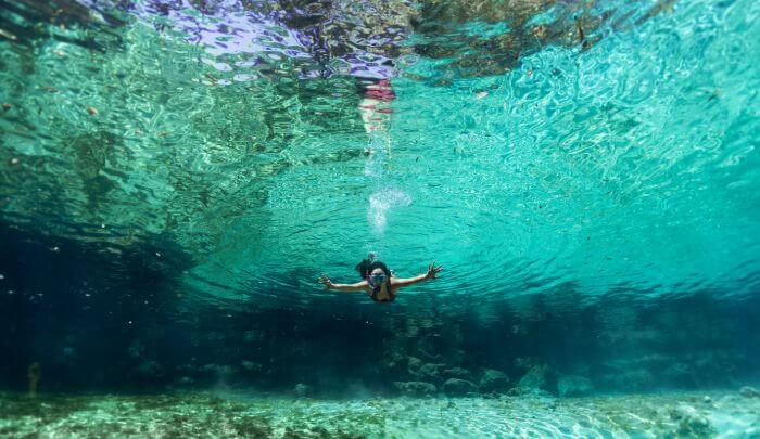 Snorkelling in a spring in Florida